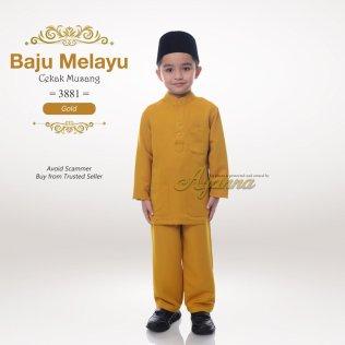 Baju Melayu Cekak Musang 3881 (Gold)