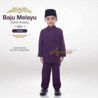 Baju Melayu Cekak Musang 3881 (Purple)